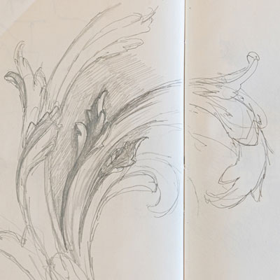 Rococo decoration, drawn by Francis Terry, pencil, 2010.
