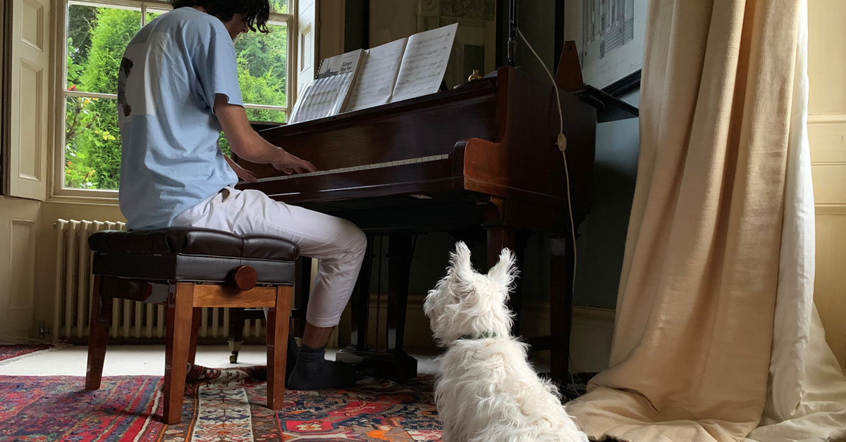 Why does my Puppy like Mozart?